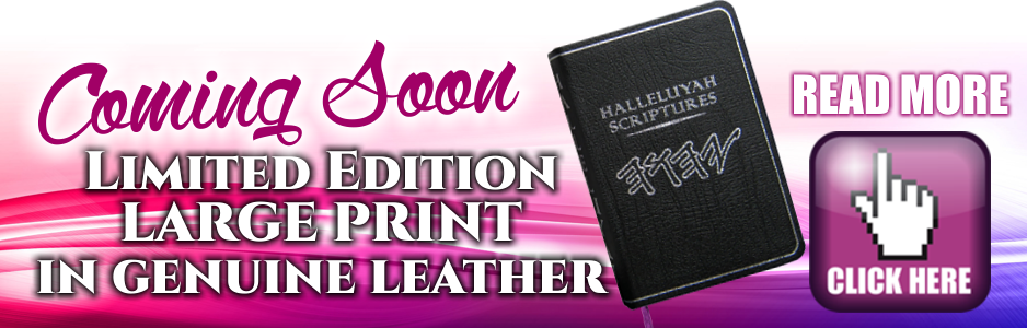 Banner Leather Edition