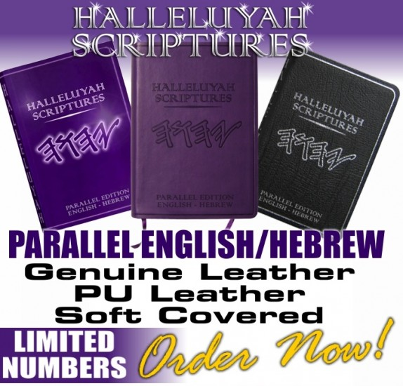 Hebrew english +messianic bible