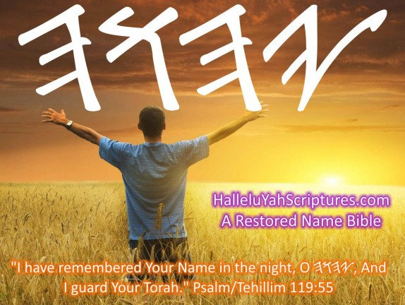 HalleluYah Scriptures Parallel + Hebrew Bible + Sacared Bible + Restored Name Bible + The Best Bible & Devine Name Bible + The Scriptures & Cepher Yahweh + Yahwah 22
