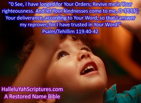 HalleluYah Scriptures Parallel + Hebrew Bible + Sacared Bible + Restored Name Bible + The Best Bible & Devine Name Bible + The Scriptures & Cepher Yahweh + Yahwah 19